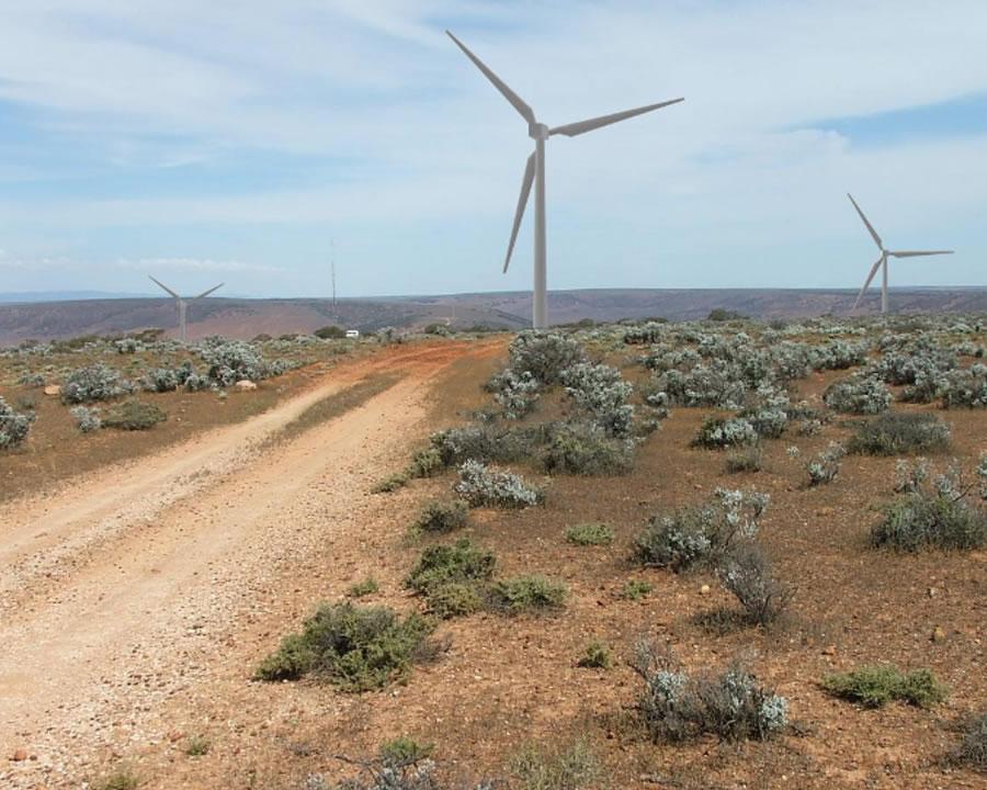 Renewable Developer Asia Australia